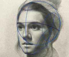 Drawing the Structure and Anatomy of the Head